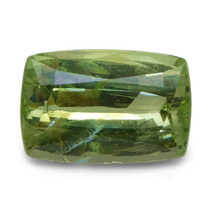 3.07 ct Cushion Green Grossularite / Tsavorite Garnet - Skyjems Wholesale Gemstones