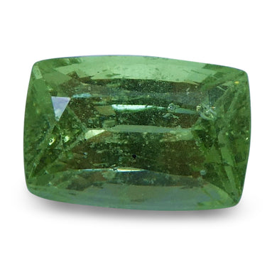 Tsavorite Garnet 2.23 cts 8.41x5.69x4.82mm Emerald Slightly Yellowish Green  $180
