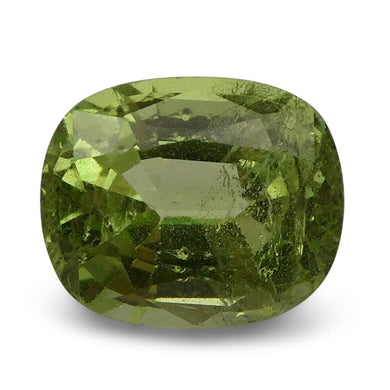 2.71 ct Cushion Green Grossular / Tsavorite Garnet CGL-GRS Certified - Skyjems Wholesale Gemstones