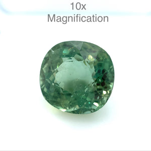 11.51ct Cushion Green Apatite - Skyjems Wholesale Gemstones