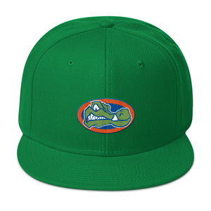 Green Gators Snapback Hat