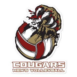 CofC Men's Volleyball Bubble-free stickers
