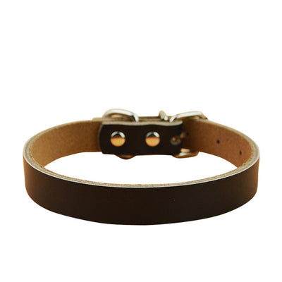 Genuine Leather Pet Collar 5 Colors Small and Medium Dogs