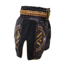 Muay Thai Shorts, Black and Gold