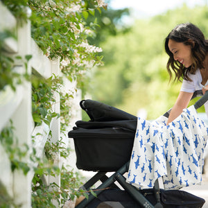 Stroller Buying Guide: How to Choose a Stroller