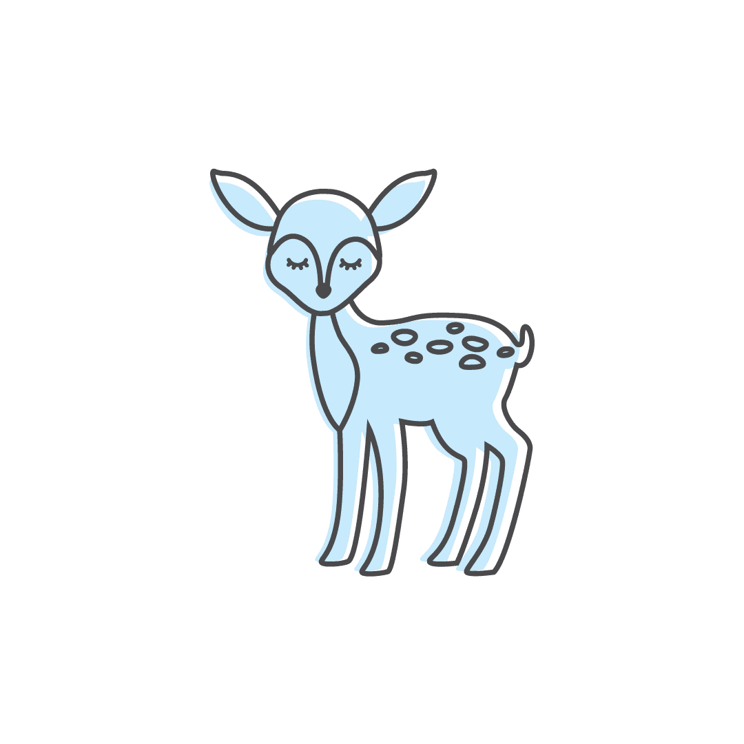 illustration of fawn