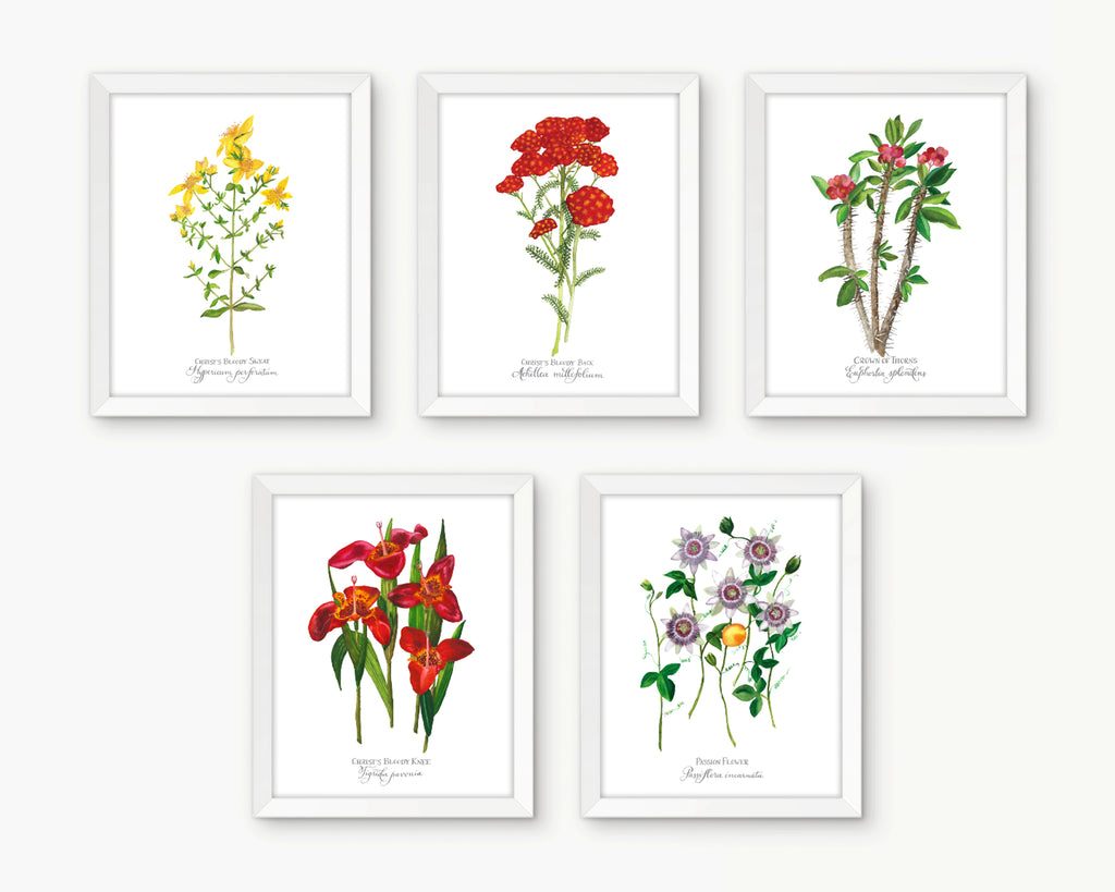 INDIVIDUAL BOTANICAL ROSARY SET OF FIVE, SORROWFUL MYSTERIES