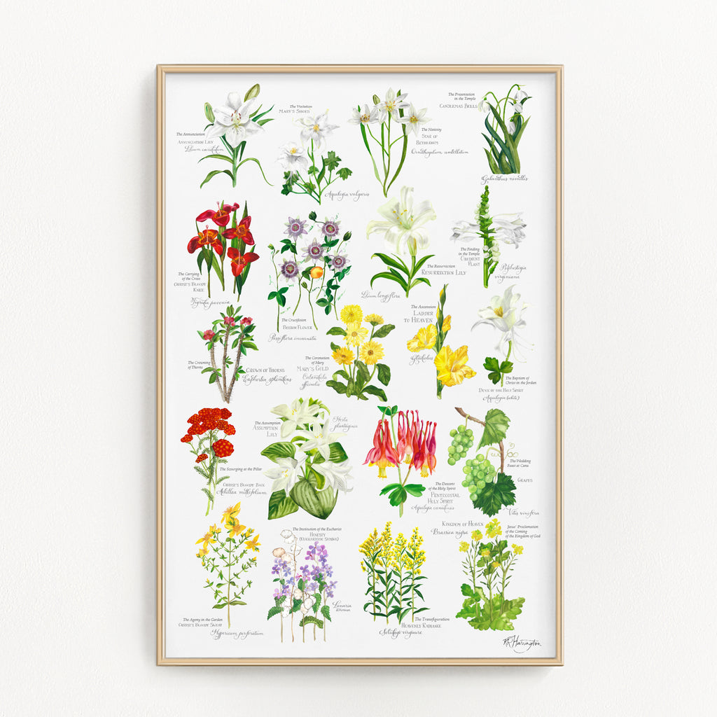 BOTANICAL ROSARY POSTER - COMPLETE