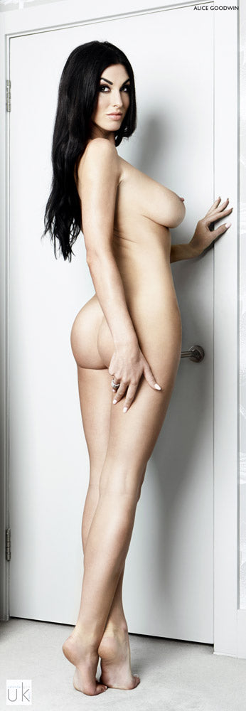 Alice Goodwin Official Door Poster 06
