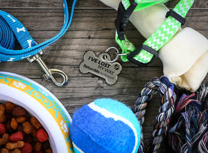 ReturnMe Pet Tag