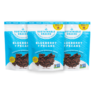 Three Sustainable Snacks Blueberry and Pecans chocolate superfood snack 4oz bags