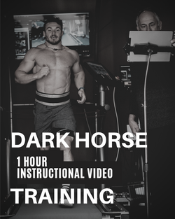 Dark Horse: Instructional Video