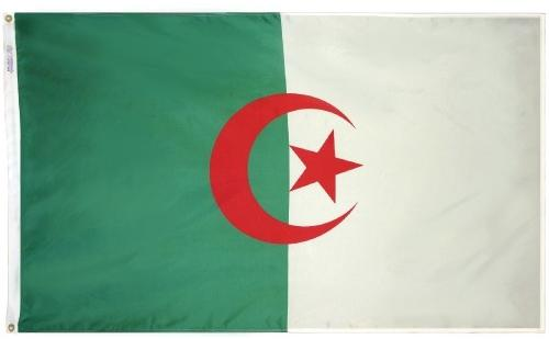 Algeria (UN) Outdoor Flag