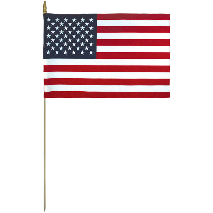 "12"" x 18"" US Cemetery Flag with Pointed Staff"