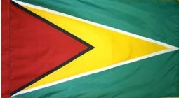 Guyana Indoor Flag for sale