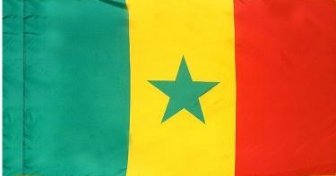 Senegal Indoor Flag for sale