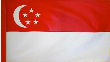 Singapore Indoor Flag for sale