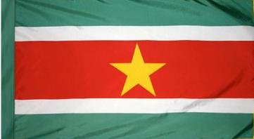 Suriname Indoor Flag for sale