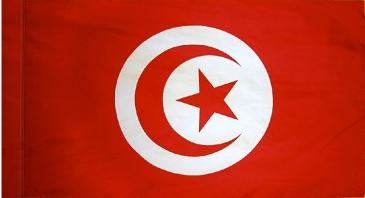 Tunisia Indoor Flag for sale
