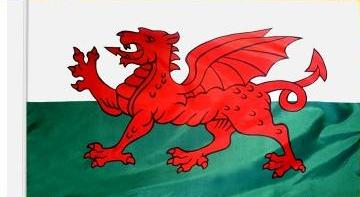 Wales Indoor Flag for sale