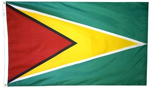Guyana outdoor flag for sale
