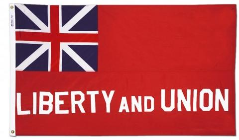 The Taunton flag for sale