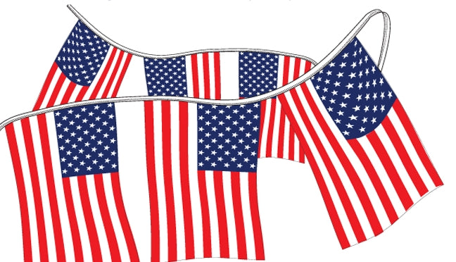 Stars & Stripes Pennant Strings