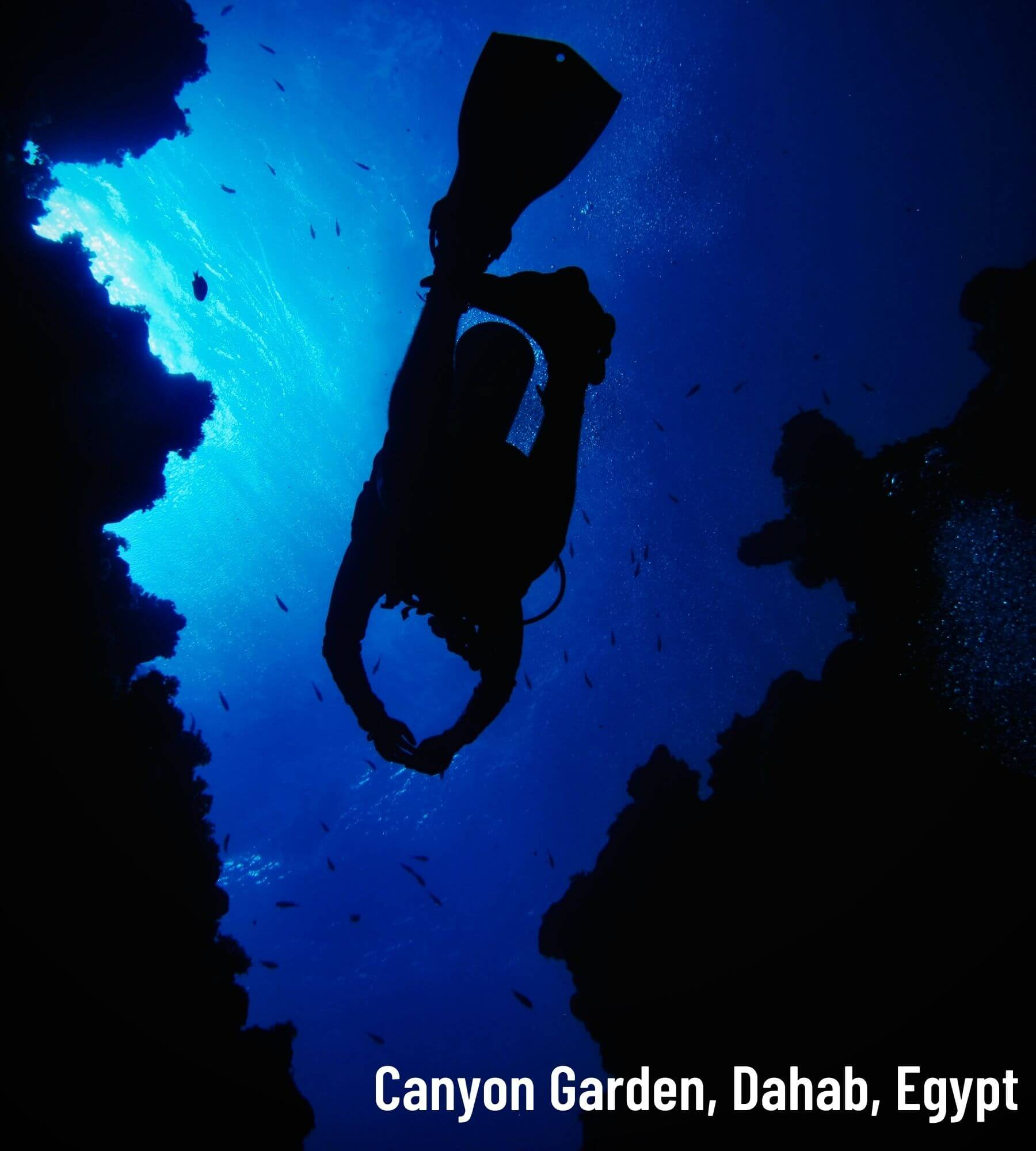 blue hole coral reef