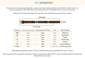 Pampeano Dog Collar