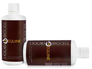 Liquid Biocell Equine by Modere