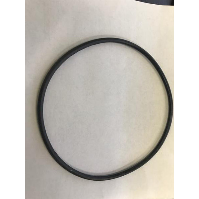 "O-Ring Replacement Part (neck of the filter) for 13"" Sand Filter System Above Ground Pool Pump P75132-11"