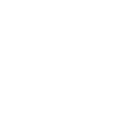 The Wooden Boar Soap Company