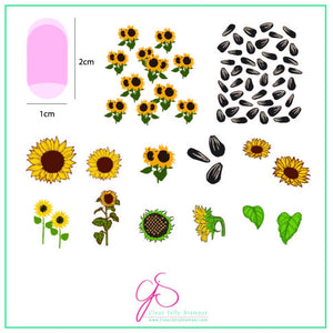 Sunflowers (CjS-163) Steel Stamping Plate