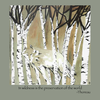 "Detail of Timber Wolf wildlife t-shirt design, featuring a mysterious timber wolf looking out from a grove of aspens accompanied by the Thoreau quote, ""In wildness is the preservation of the world"""