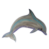 Detail of Dolphin t-shirt design, showing a simple leaping bottlenose dolphin