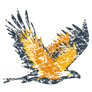 Detail of Eagle Spirit t-shirt design, featuring a bald eagle within a larger eagle silhouette rendered in the batik style