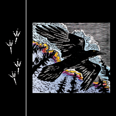 Detail of Raven Tracks t-shirt design, featuring raven tracks on the front and a raven in flight on the back