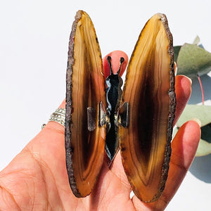 Gorgeous  Agate Display Butterfly Specimen #1