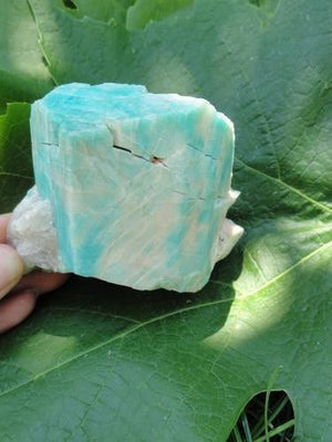 Amazonite Crystals - Earth Family Crystals