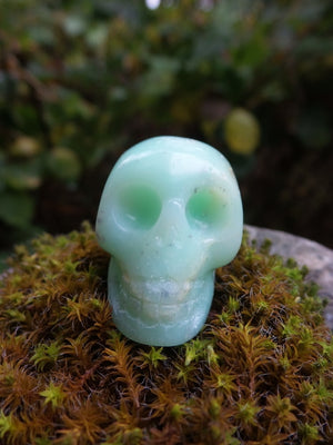 Unique Soft Green Chrysoprase Skull Carving - Earth Family Crystals