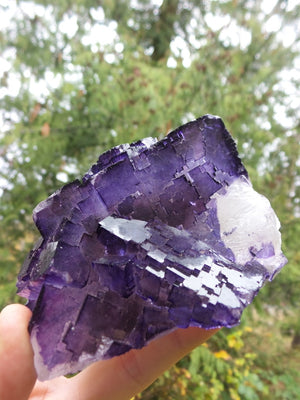 Fractal Pattern XL Midnight Purple Fluorite Standing Display - Earth Family Crystals