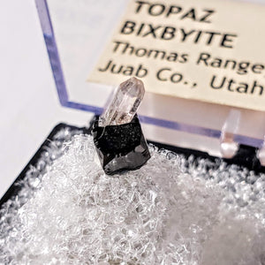 Cute Gemmy Topaz Point Nestled on Bixbyite Mini Specimen From Thomas Range, Utah in Collectors Box - Earth Family Crystals
