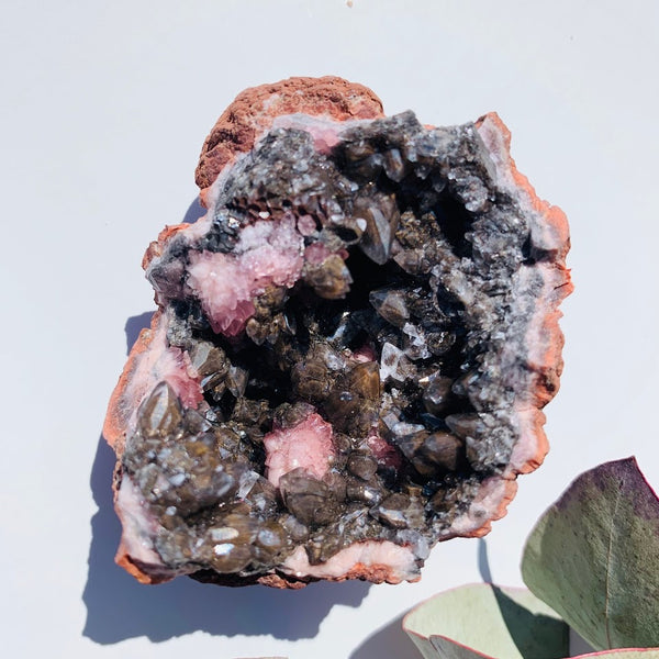 One of a Kind Pink Amethyst & Black Stellar Beam Calcite Geode From Patagonia