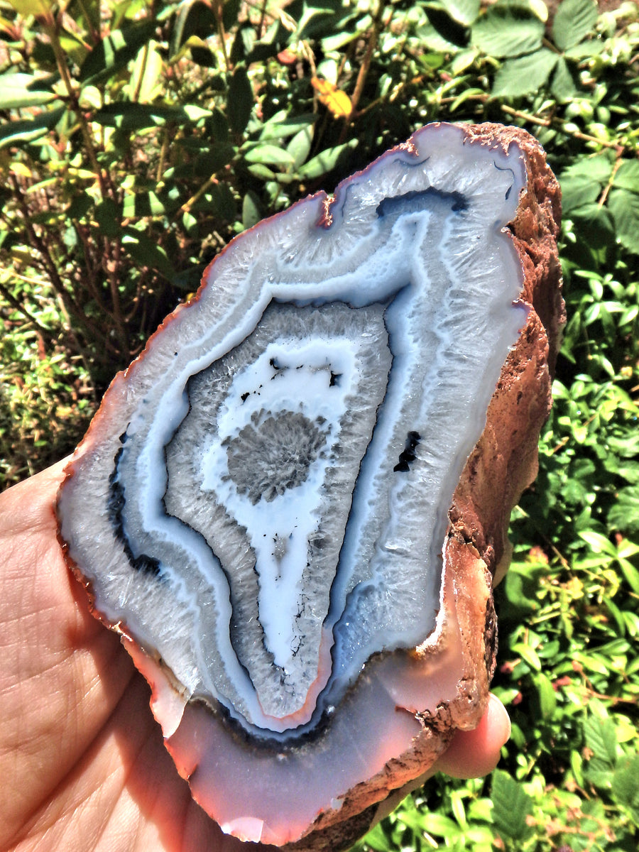 Great Depth Large Blue & White Swirling Flower Patterns Agate Partially Polished From Patagonia