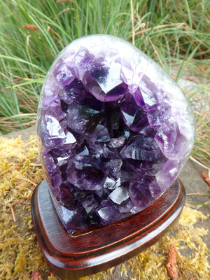 AA Grade Deep Purple Amethyst Free Form Specimen on Removable Wood Display Stand From Uruguay