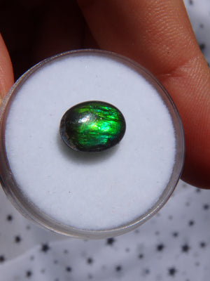 Gorgeous Flashes Quartz Capped  Alberta Ammolite Cabochon For Jewellery Making 2