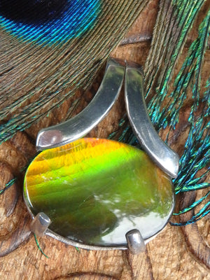 Beautiful Green & Golden Flash Quartz Capped Alberta Ammolite Pendant In Sterling Silver (Includes Silver Chain) - Earth Family Crystals