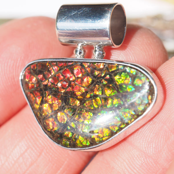 Beautiful Green & Red Alberta Ammolite Pendant in Sterling Silver (Includes Silver Chain) #1 - Earth Family Crystals