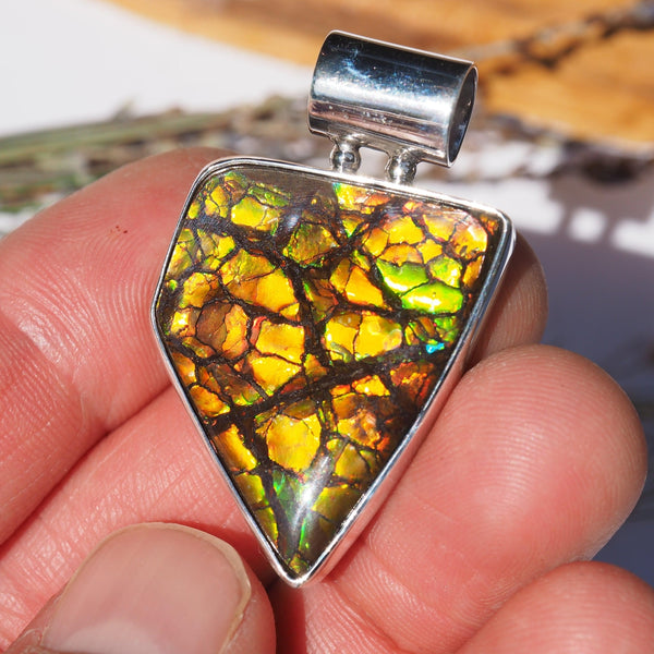 Lovely Natural Flashes Alberta Ammolite Pendant in Sterling Silver (Includes Silver Chain) #2 - Earth Family Crystals
