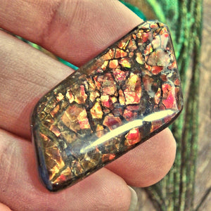 Moving Fiery Red Flashes Alberta Ammolite Cabochon Ideal for Crafting